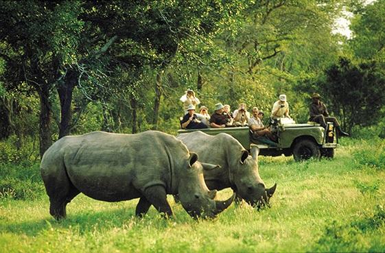 Chobe River Safari aboard the M.S. ZAMBEZI QUEEN